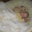 Спит наше солнышко